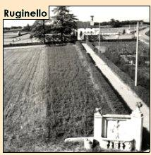 Ruginello